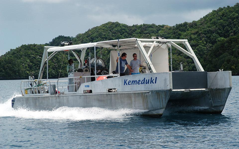 12m catamaran with A-frame