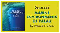 Marine Environments of Palau book cover